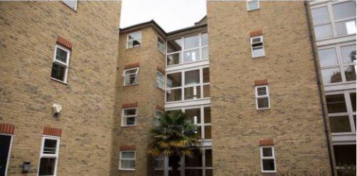 社会人の海外留学:ロンドンの学生寮に住む